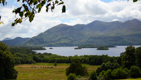 Ireland Ring of Kerry Horseback Riding Vacations