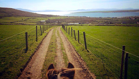 Longs Horseback Riding Holidays Dingle Peninsula Ireland