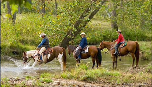 Marriott Ranch, Virginia ranch vacations with horses