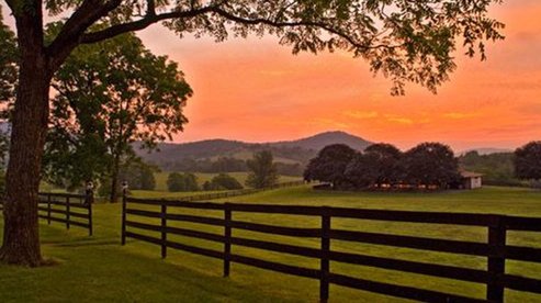 Marriott Ranch, Virginia Hunt Country horse riding holidays
