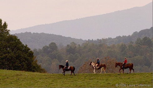 Marriott Ranch, Virginia horse vacations
