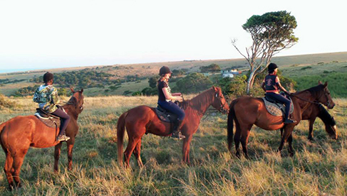 Mkulu Kei Horse Trails Childrens Pony Camps South Africa