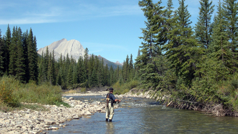 A Lazy H Outfitters Montana Horse Pack Holidays and Fishing Vacations