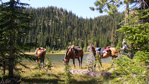 Horseback Riding Montana Vacations for Summer