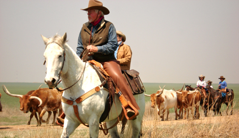 Moore Ranch Kansas working guest ranch vacations with longhorn cattle drives