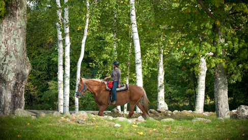 Mountain Top Inn- Vermont Riding Vacations