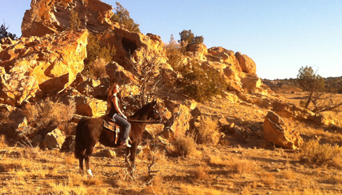 New Mexico Horse Riding holidays albuquerque