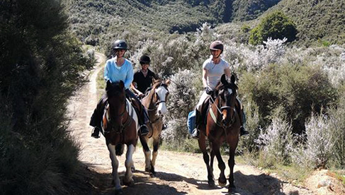 Poronui New Zealand Horseback Holidays