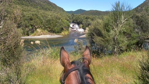 Poronui New Zealand Luxury Equestrian Vacations