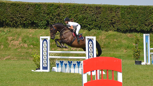Oakwood Stables Ireland Equestrian Training Vacations