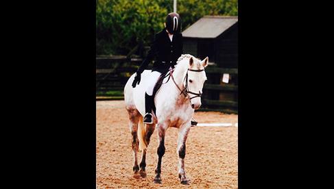 Oakwood Stables Ireland Pony Camps