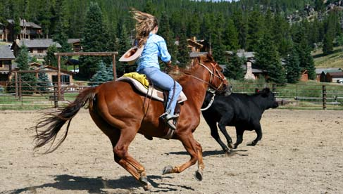 Paradise Ranch- Wyoming Dude Ranch