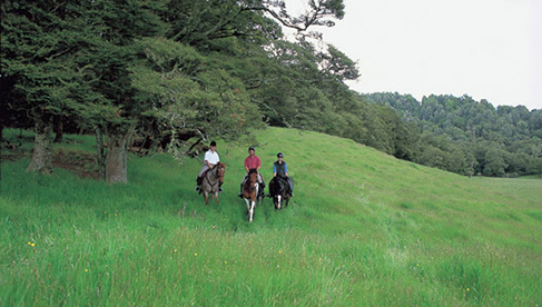 Poronui New Zealand Equestrian Holidays