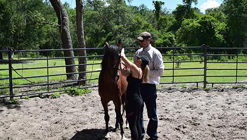 Rafter P Orlando Florida guest ranch riding travel