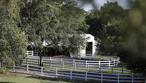 Rafter P Florida equestrian vacations