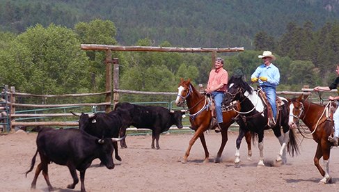 Rainbow Trout Ranch Colorado Guest Ranch Vacations
