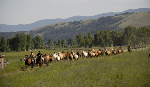 The Ranch at Rock Creek Luxury Montana Dude Ranch Holidays