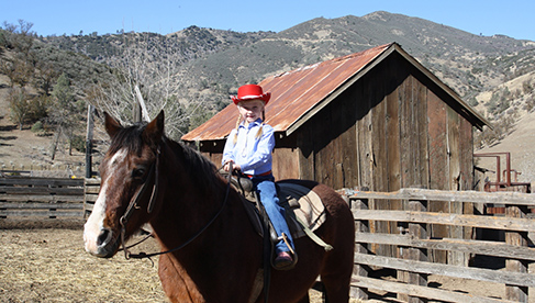 Rankin Ranch California Ranch Vacation Horse Camps