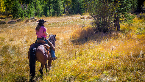 Rawah Ranch Colorado Horseback Riding