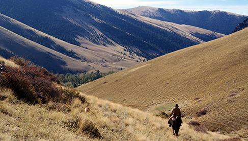 Rocking Z Guest Ranch Montana Parelli Horsemanship Ranches