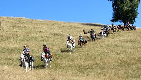Romania Equestrian Vacations