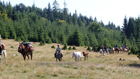 Carpathian Mountains Horseback Riding Holidays