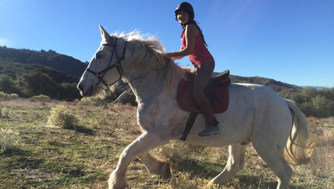 Running Horse Ranch California Trail Riding Vacations