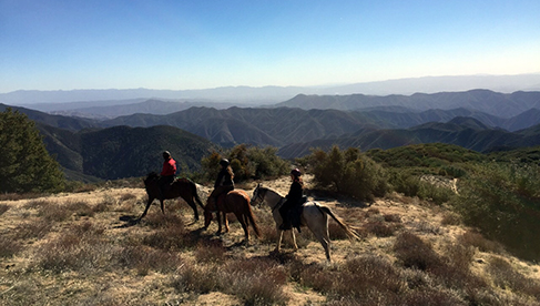 Running Horse Ranch Los Angeles Equestrian Riding Holidays