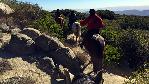 Running Horse Ranch California Horseback Riding Vacations