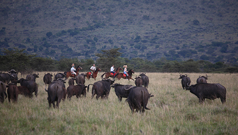 Safaris Unlimited Kenya Africa riding vacations