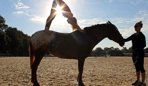 Salamander Resort & Spa Horseback Yoga
