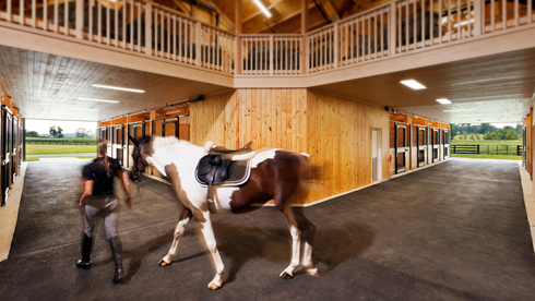 Salamander Resort & Spa Stables