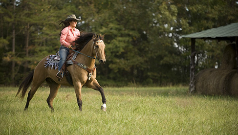 Shangrila Guest Ranch- Virginia Riding Vacations