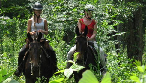 Shangri la Virginia horseback riding tours