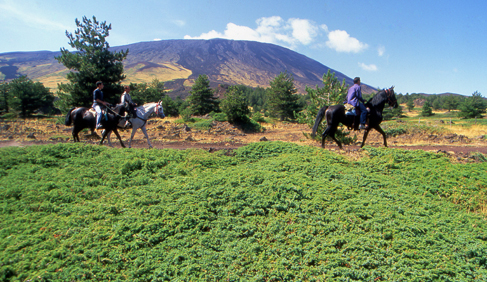 sicily horseback riding vacations