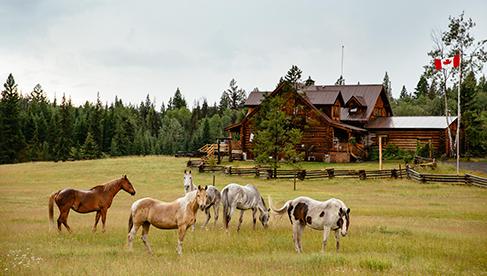 Siwash Lake Wilderness Resort British Columbia Horseback Riding