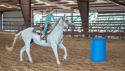 Sky Ranch Texas Oklahoma Colorado Christian Horse Clinics