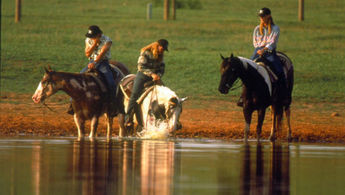 Southern Cross Guest Ranch- Georgia Dude Ranch