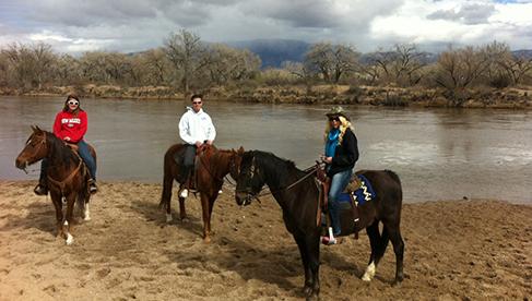 New Mexico horseback riding albuquerque