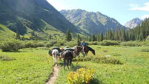 T Bar M Outfitters horseback holidays Colorado and Utah