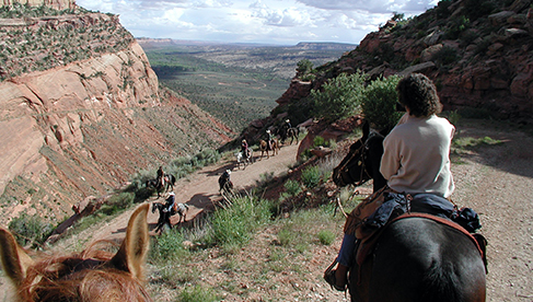 T Bar M Outfitters Colorado and Utah horseback riding vacations