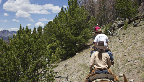 Explore the country under the guidance of our seasoned cowboys at T Cross Ranch- Wyoming Dude Ranch.