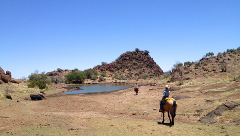 West Texas Davis Mountains Horse Riding Vacations USA