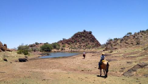West Texas Davis Mountains Horse Riding Vacations USA