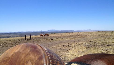 West Texas Horseback Riding Holidays USA