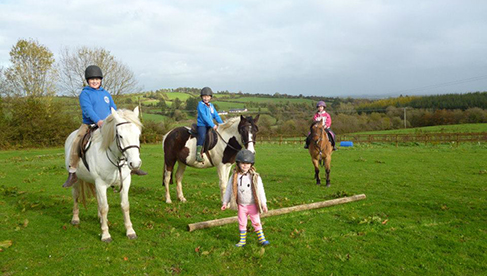 Tipperary Mountain Trekking Centre Ireland horse camps