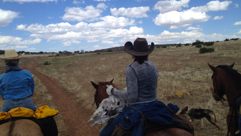 Texas Horseback Adventures & Riding Vacations