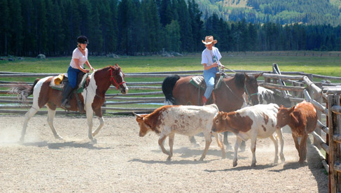 Vista Verde Guest Ranch- Luxury Dude Ranch