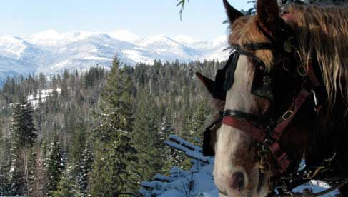 Western Pleasure Guest Ranch- Idaho Dude Ranch
