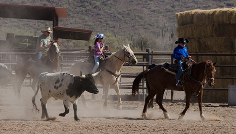 White Stallion Ranch Arizona Dude Ranch Vacations